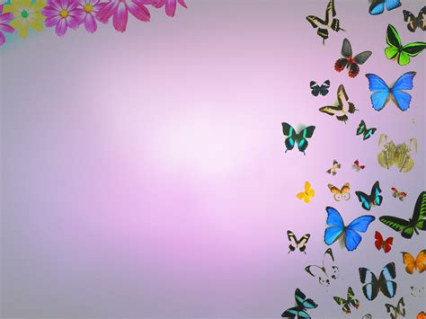 [45+] Free Wallpaper Butterflies and Flowers on